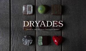DRYADESチョコレート